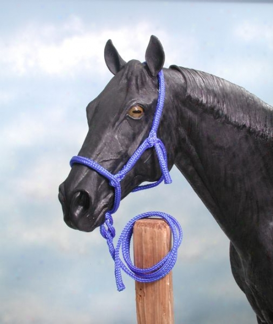Tough-1 12 Pack Horse Size Poly Rope Tied Halter With  Lead