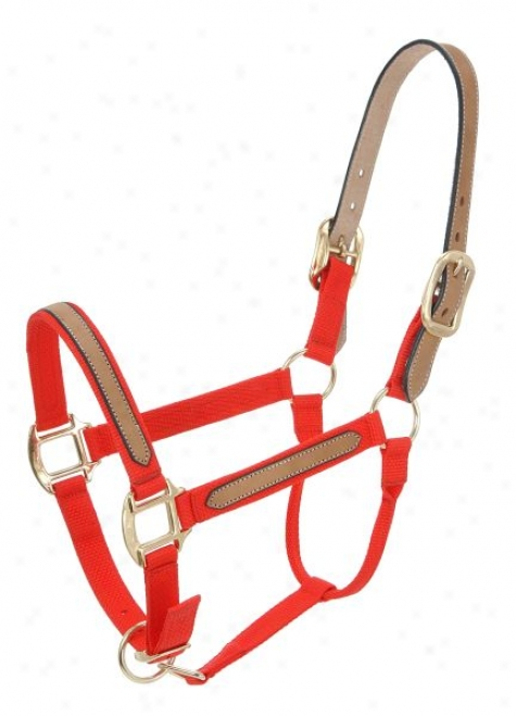 Tough-1 Break-away Halter