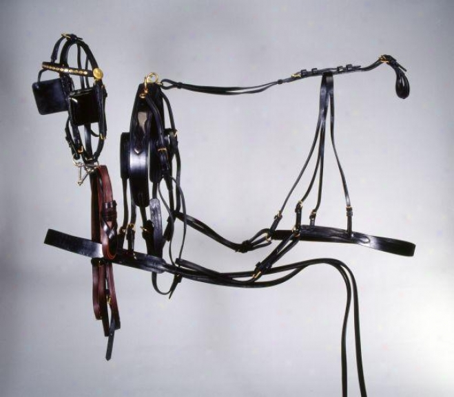 Tough-1 Deluxe Horse Harness - Black