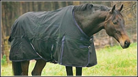 Tuffrider Horse Turnout Sheet 1200 D