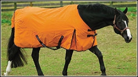 Tuffrider Pony Turnout Sheet 600 D