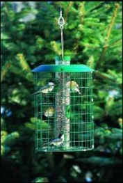Unique Bird Feeders - Green