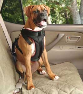 Vehicle Safety Harness For Dogs - Large