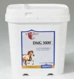 Vita Flex Dmg 3000
