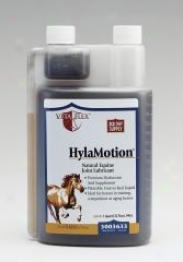 Vita Flex Hylamotion Liquid - 1 Quart
