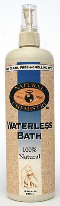 Waterless Bath - 16.9 Ounces