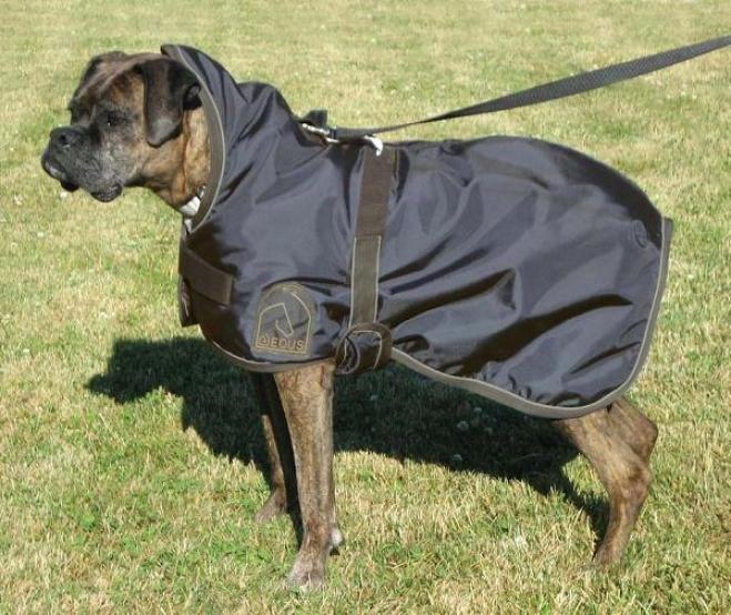 Waterproof Dog Rug