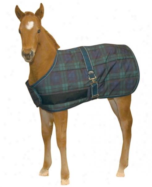 Weatherbeeta Jasper Growing Foal Rug