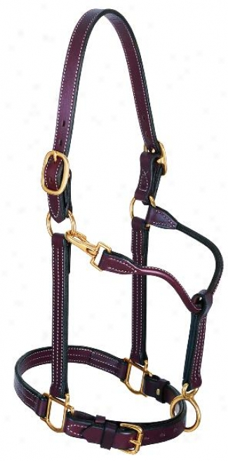 Weaver 1 Leather Track Halter
