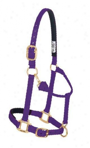 Weaver Ultra Adjustable Chin And Throat Bite Halter
