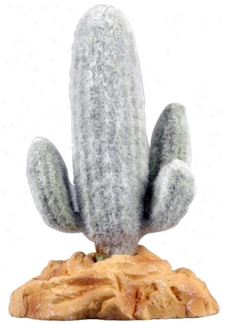 Zilla Desert Series Terrarium Plant - Mexican Saguaro Cactus - 5