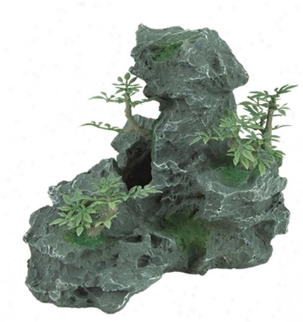 Zilla Granite Cave