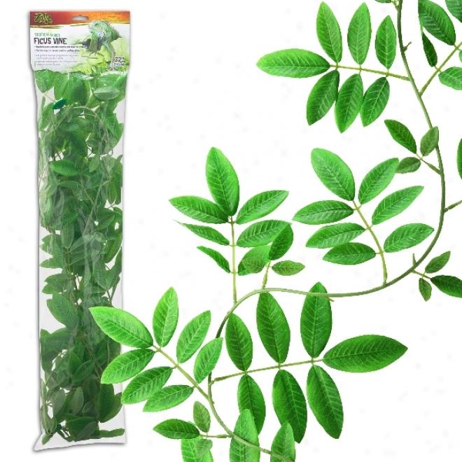 Zilla Tropical Series Terrarium Vine - Ficus Vine - 72