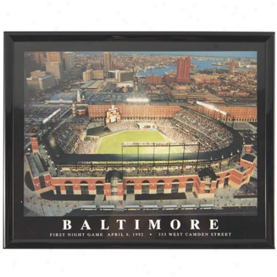 Baltimore Orioles Oriole Park Stadium Picture