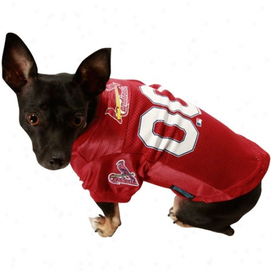 St Louis Cardinals Red Mesh Pet Jersey