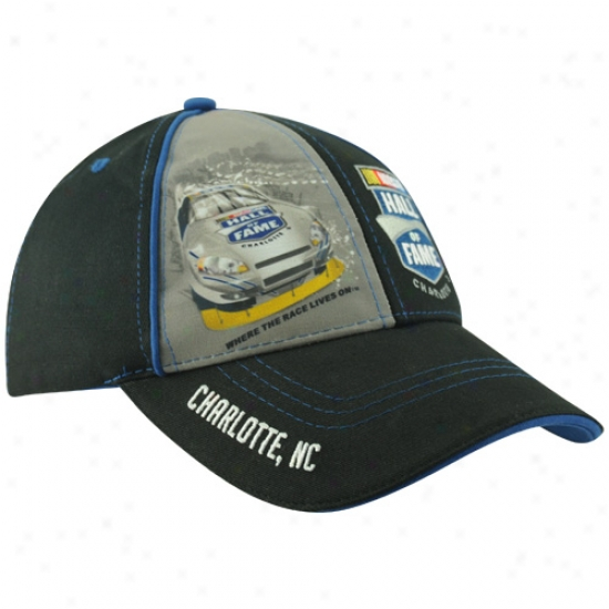 Tony Stewart Merchandise: Nazcar 20l0 Hall Of Fame Black Adjustable Hat