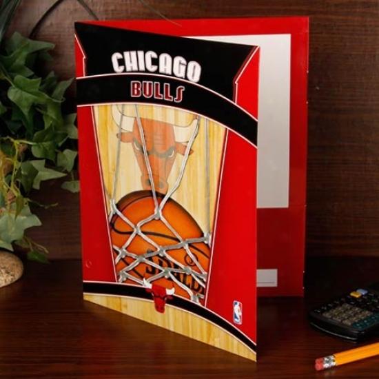 Chicago Bulls Team Folder