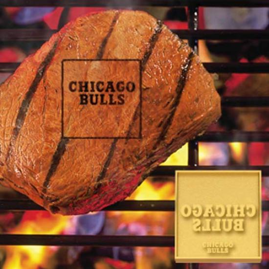 Chicago Bulls Team Logo Fan Brand
