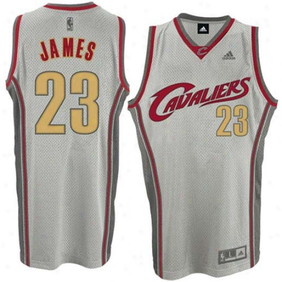 Cleveland Cavs Jerseys : Adidas Cleveland Cavs #23 Lebron James Ash Glacier Swingman Basketball Jerseys