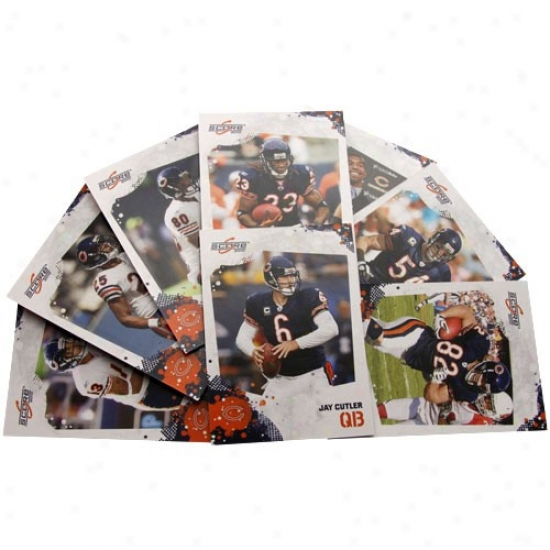 Chicago Bears 2010 Team Set