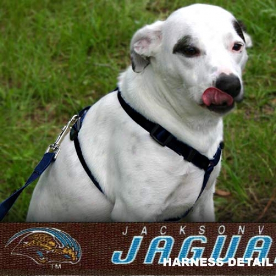 Jacksonville Jaguars Black Dog Harness
